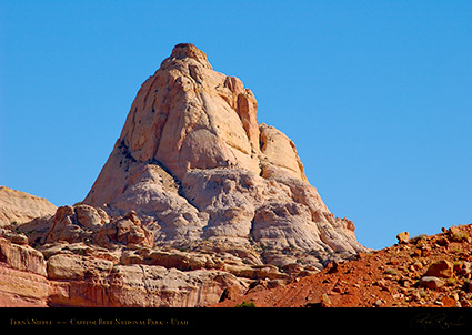 Ferns_Nipple_Capitol_Reef_1396