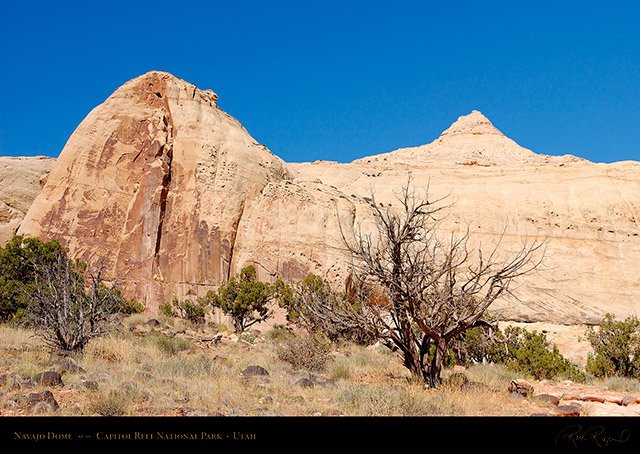 Navajo_Dome_Capitol_Reef_1499