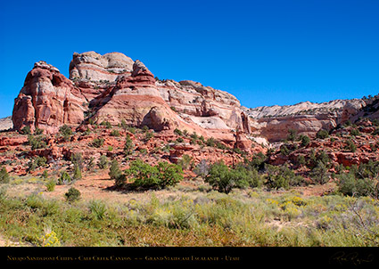 Calf_Creek_Canyon_0847