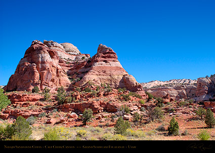 Calf_Creek_Canyon_0848