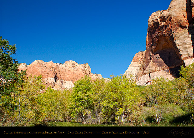 Calf_Creek_Canyon_0892