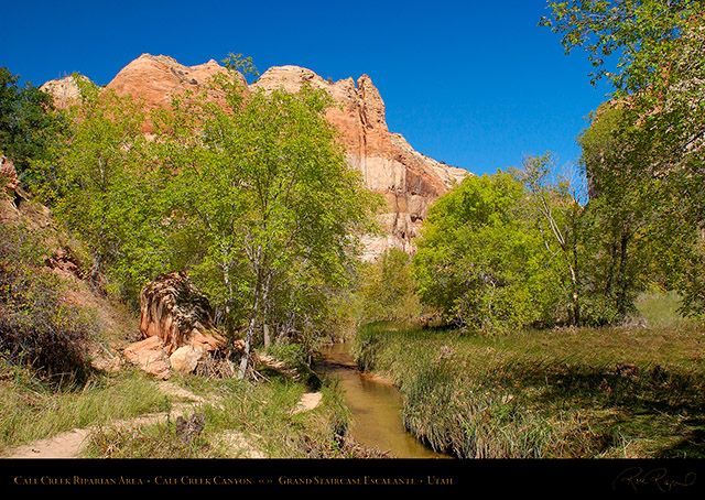 Calf_Creek_Canyon_0894