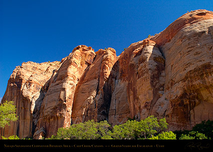 Calf_Creek_Canyon_0896