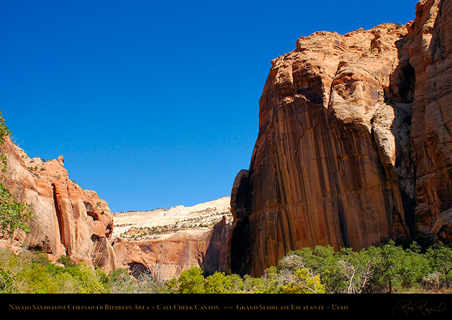 Calf_Creek_Canyon_0897