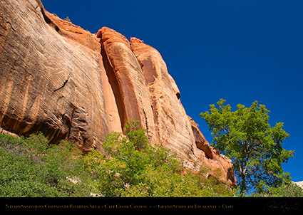Calf_Creek_Canyon_0900