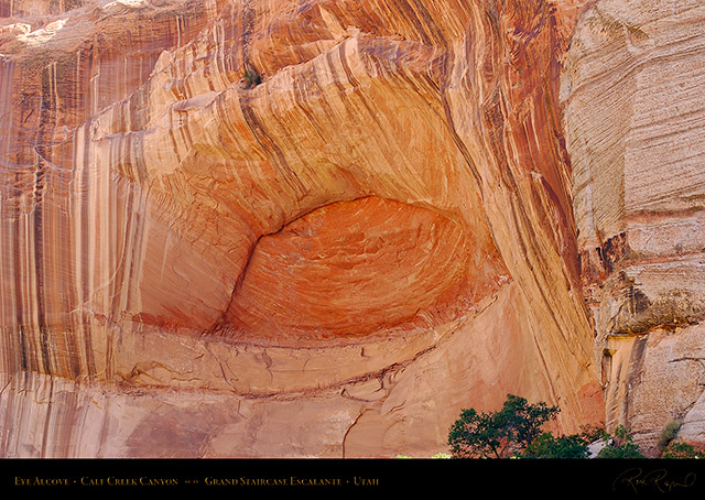 Calf_Creek_Canyon_Eye_Alcove_0883