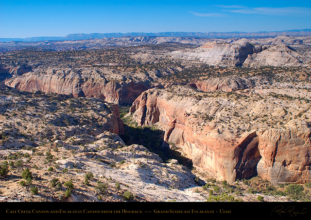 Calf_Creek_Canyon_Hogback_Grand_Staircase_0819
