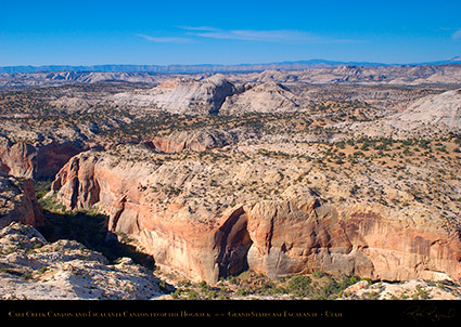 Calf_Creek_Canyon_Hogback_Grand_Staircase_0820