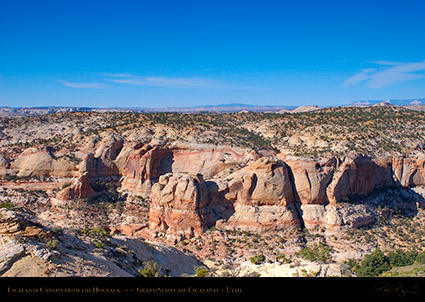 Escalante_Canyon_Hogback_Grand_Staircase_0825