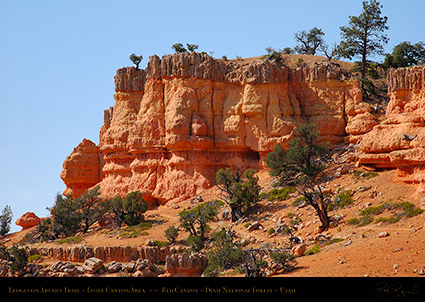 Red_Canyon_Ledges_Arches_Trail_0726