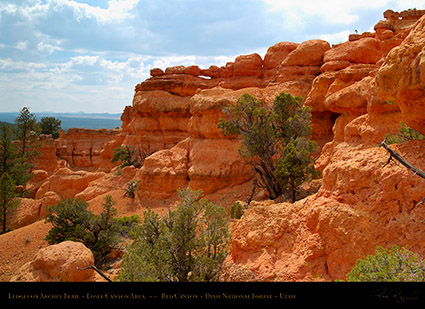 Red_Canyon_Ledges_Arches_Trail_X2304