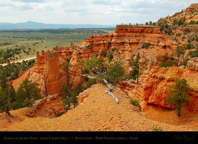 Red_Canyon_Ledges_Arches_Trail_X2315