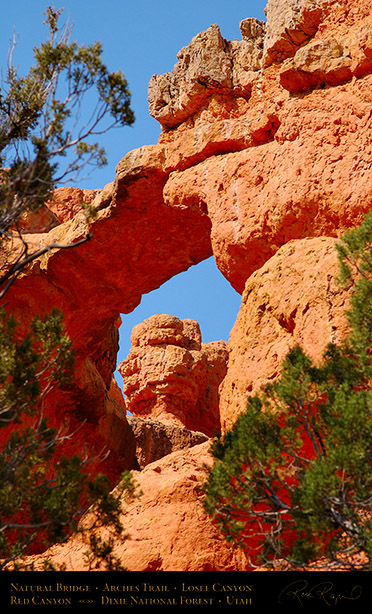 Red_Canyon_Natural_Bridge_Arches_Trail_0737