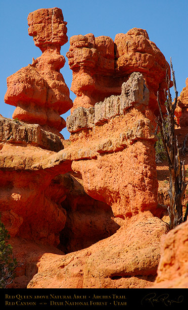 Red_Canyon_Red_Queen_Arch_Arches_Trail_0735