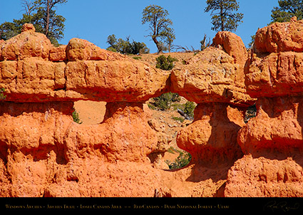 Red_Canyon_Windows_Arches_Trail_0710