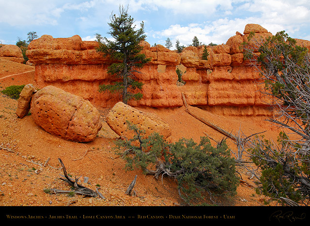 Red_Canyon_Windows_Arches_Trail_X2339