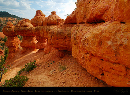 Red_Canyon_Windows_Arches_Trail_X2346