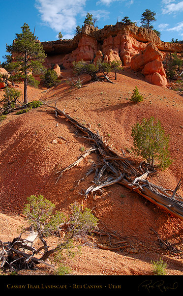 Red_Canyon_Cassidy_Trail_Landscape_X2200
