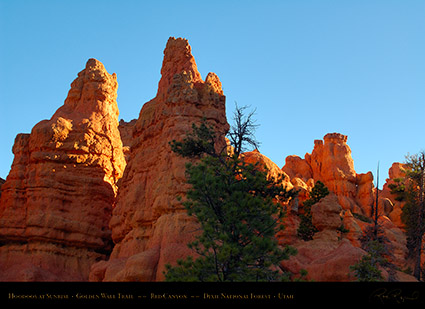 Red_Canyon_Golden_Wall_Trail_Sunrise_X5686