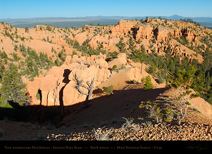 Red_Canyon_Golden_Wall_Trail_X5695
