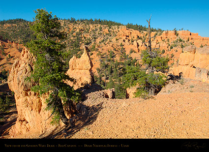 Red_Canyon_Golden_Wall_Trail_X5698