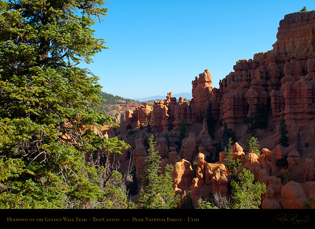 Red_Canyon_Hoodoos_Golden_Wall_Trail_X5703