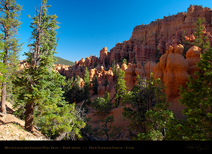 Red_Canyon_Hoodoos_Golden_Wall_Trail_X5706