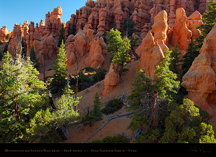 Red_Canyon_Hoodoos_Golden_Wall_Trail_X5715