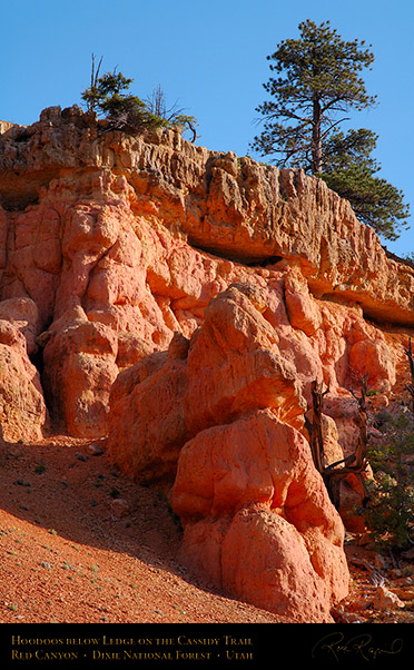 Red_Canyon_Cassidy_Trail_X2199