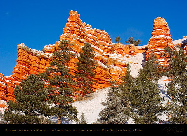 Red_Canyon_Pink_Ledges_Winter_5566