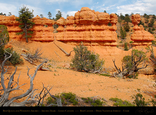 Red_Canyon_Red_Queen_Windows_Arches_Trail_X2337