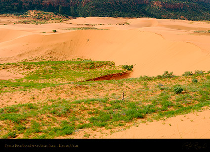 Coral_Pink_Sand_Dunes_X2421