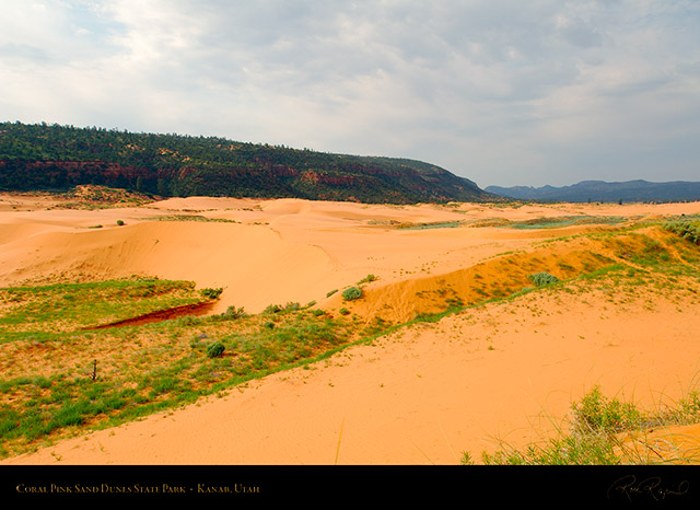 Coral_Pink_Sand_Dunes_X2426