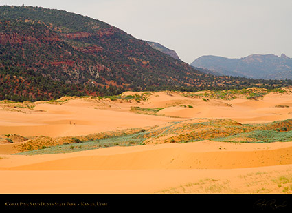 Coral_Pink_Sand_Dunes_X2435