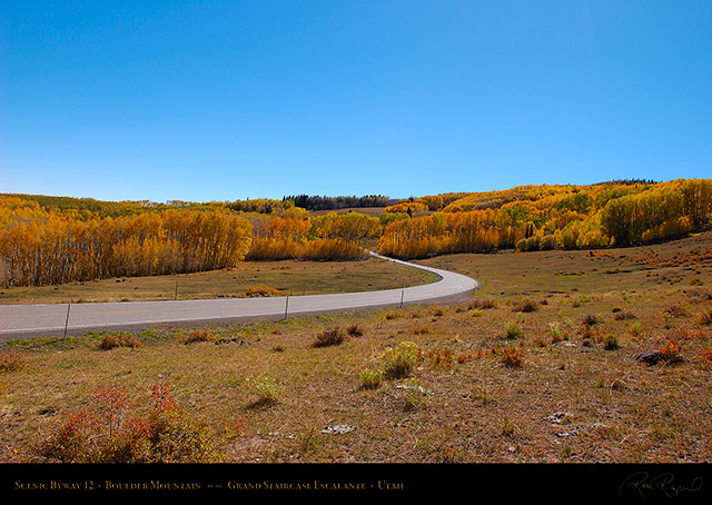 Scenic_Byway_12_Boulder_Mountain_1587