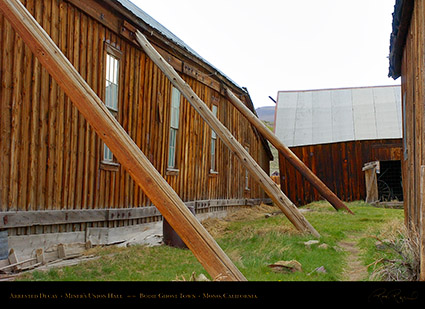 Bodie_Arrested_Decay_3291