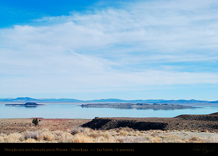 Mono_Lake_Negit_Paoha_Islands_Winter_4382