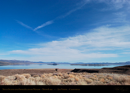 Mono_Lake_Negit_Paoha_Islands_Winter_4383