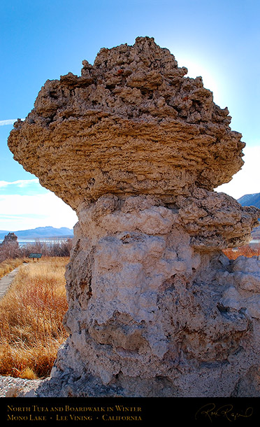 Mono_Lake_North_Tufa_Winter_4398