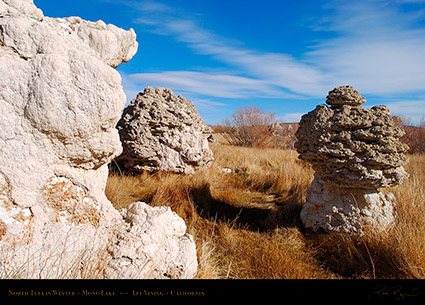 Mono_Lake_North_Tufa_Winter_4404