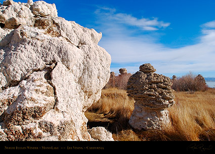 Mono_Lake_North_Tufa_Winter_4405