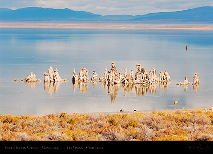 Mono_Lake_South_Tufa_Autumn_X6450