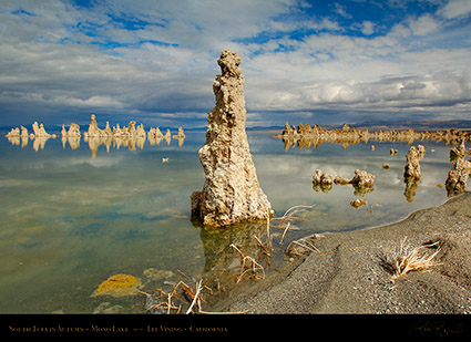 Mono_Lake_South_Tufa_Autumn_X6470