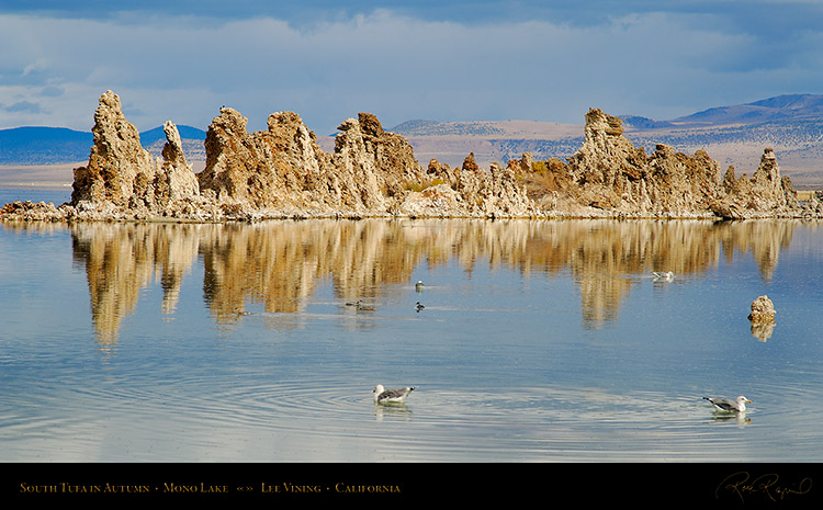 Mono_Lake_South_Tufa_Autumn_X6481