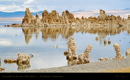 Mono_Lake_South_Tufa_Autumn_X6485