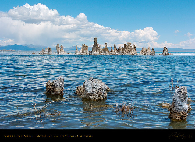 Mono_Lake_South_Tufa_Spring_3196