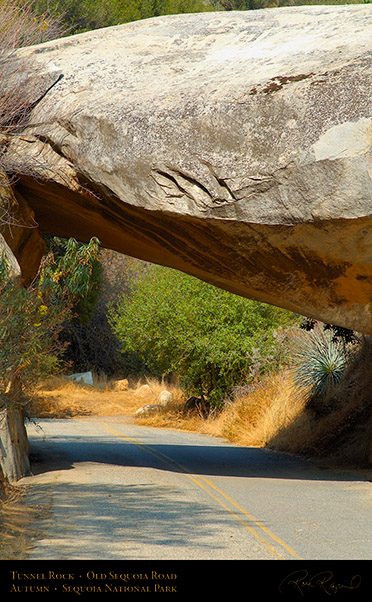 Tunnel_Rock_Old_Sequoia_Road_Autumn_X6945