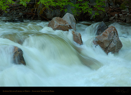 Lower_Tenaya_Creek_Dawn_X0684
