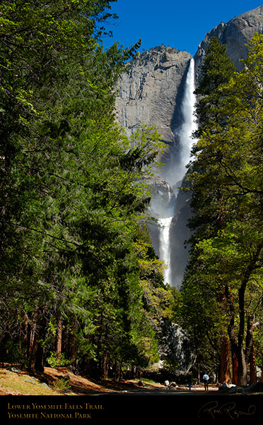 Lower_Yosemite_Falls_Trail_X0640