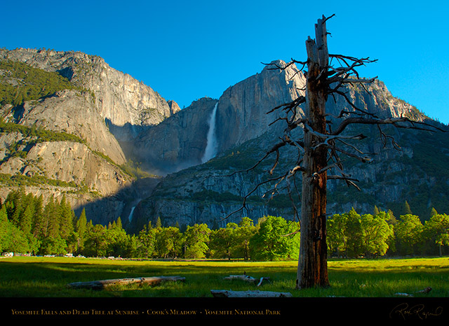 Yosemite_Falls_Cooks_Meadow_Sunrise_X0842